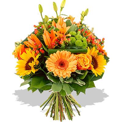Ordina 15 Armonia Arancio online e invia a domicilio