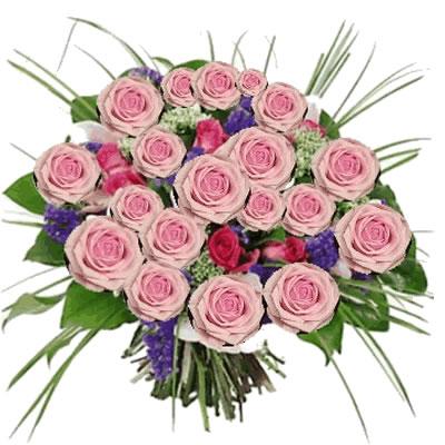 Ordina 02 Rose Rosa online e invia a domicilio