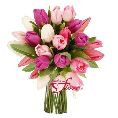 Ordina 01 Tulipani Rosa online e invia a domicilio