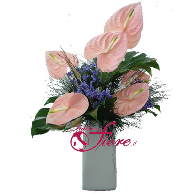 Ordina 03 Venere online e invia a domicilio