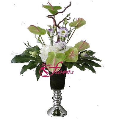 Italia in invia online mercurio for Comprare bonsai online