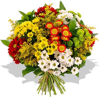 Ordina 03 Crisantemi Colorati online e invia a domicilio