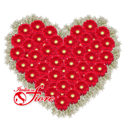 cuore-gerbere_400x400.png