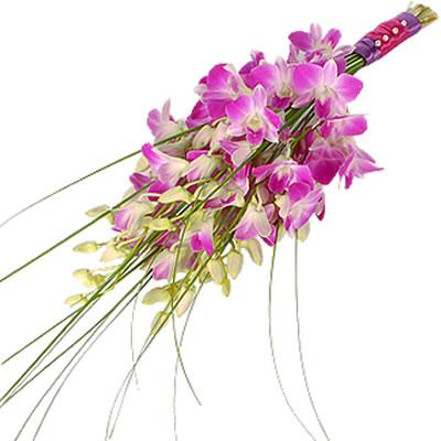 Ordina 03 Fascio di Orchidee Dendrobium online e invia a domicilio