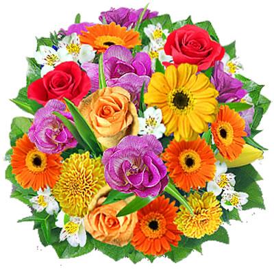 Fiori colorati vendita e consegna fiori colorati a for Fiori stilizzati colorati