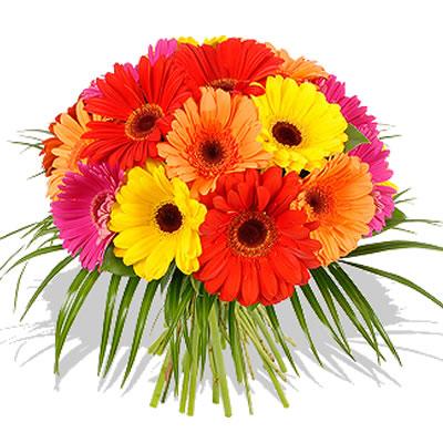 01 Bouquet di Gerbere