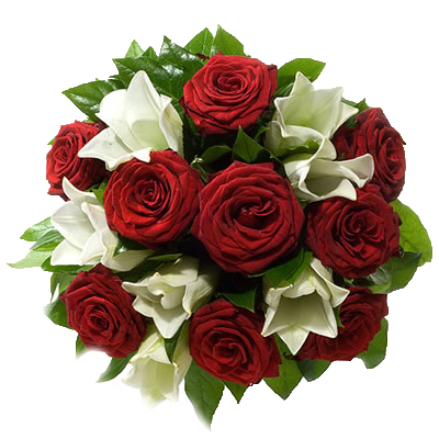 Rose Rosse e Lilium
