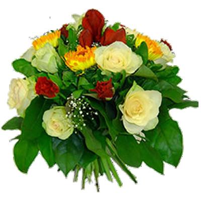 p.fiorito.png