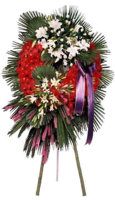 Ordina 03 Palma per Funerale online e invia a domicilio