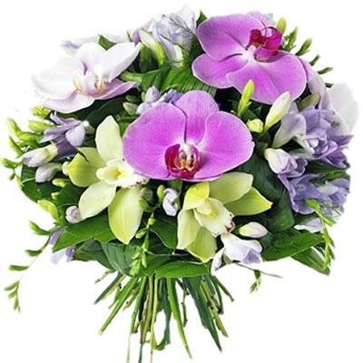 Ordina 06 Fiori e orchidee online e invia a domicilio