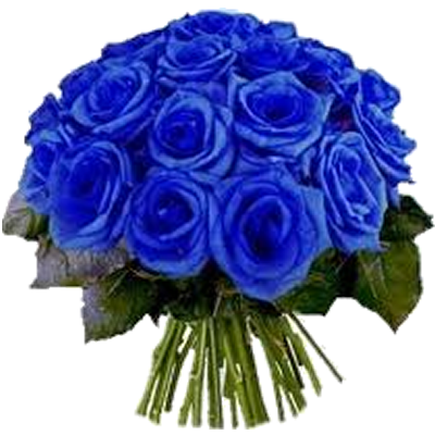 rosa_blu.png