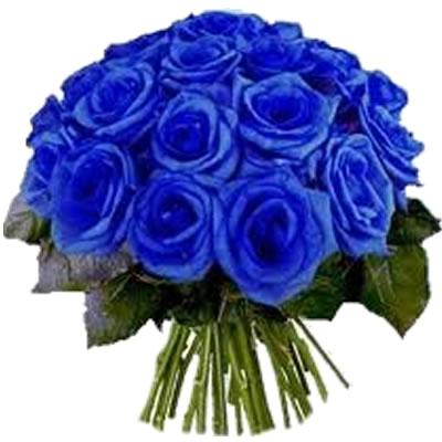 Ordina 02 Rose Blu online e invia a domicilio