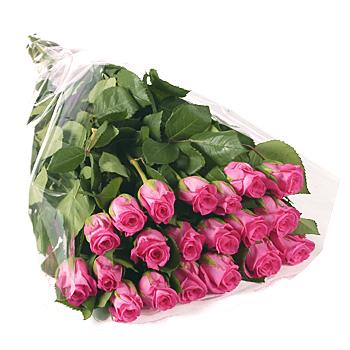 Ordina 27 Bouquet di Rose Rosa online e invia a domicilio