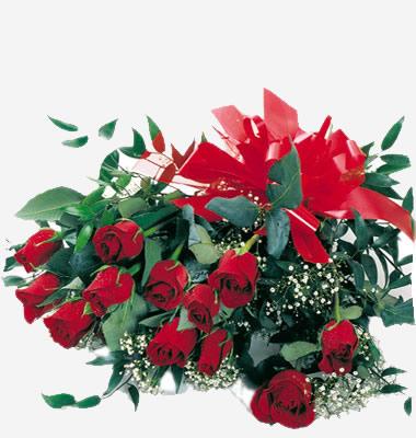 05 Mazzo di Rose Rosse a gambo Lungo