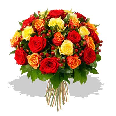 rose_rosse_gialle_e_ara.png