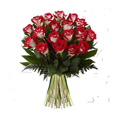 rosescreziate.png