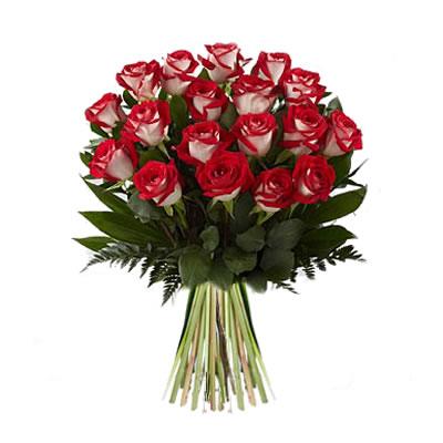 Ordina 01 Rose Screziate online e invia a domicilio