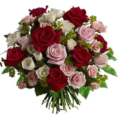 Ordina 00 Rose Rosse e Rosa online e invia a domicilio