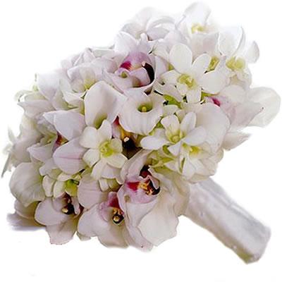 Ordina 02 Orchidee e Rose online e invia a domicilio