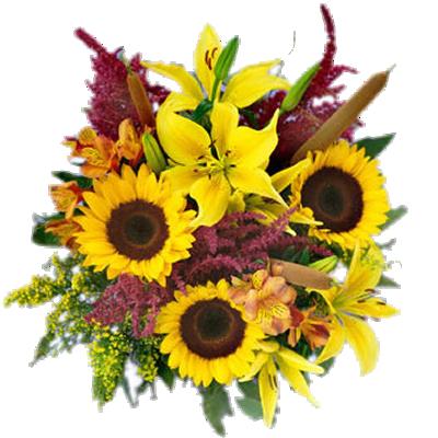 Bouquet Solare