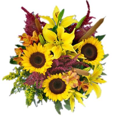 03 Bouquet Solare