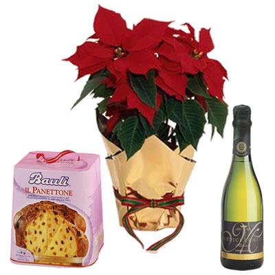Ordina 01 Buon Natale Con Spumante e Panettone online e invia a domicilio
