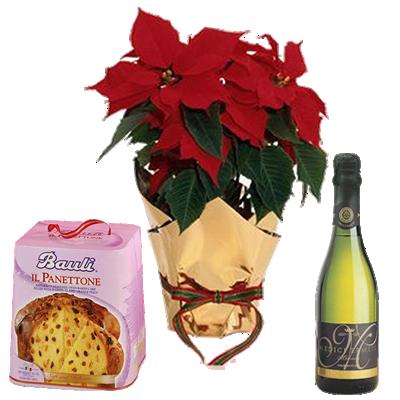 Buon Natale Con Spumante e Panettone