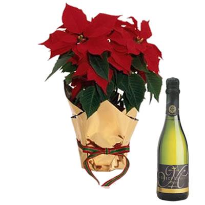 Ordina 00 Buon Natale Con Spumante online e invia a domicilio