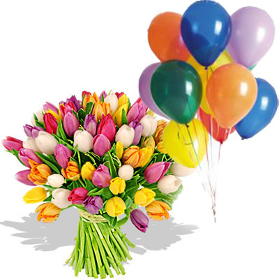 Ordina 01 Coloratissimi Tulipani Con 10 Palloncini online e invia a domicilio