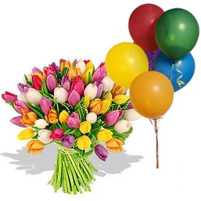 Ordina 01 Coloratissimi Tulipani Con 5 Palloncini online e invia a domicilio