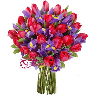 Ordina 01 Tulipani in Festa online e invia a domicilio