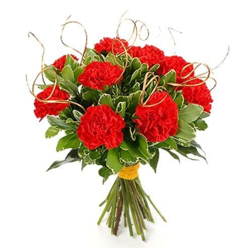 Spedire bouquet garofani rossi