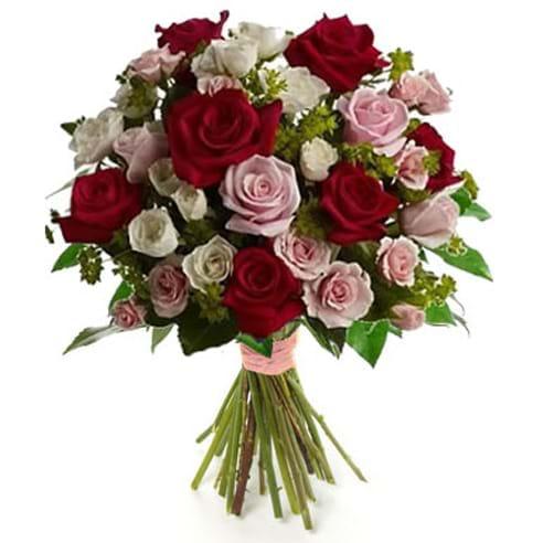 Spedire rose rosse e rosa