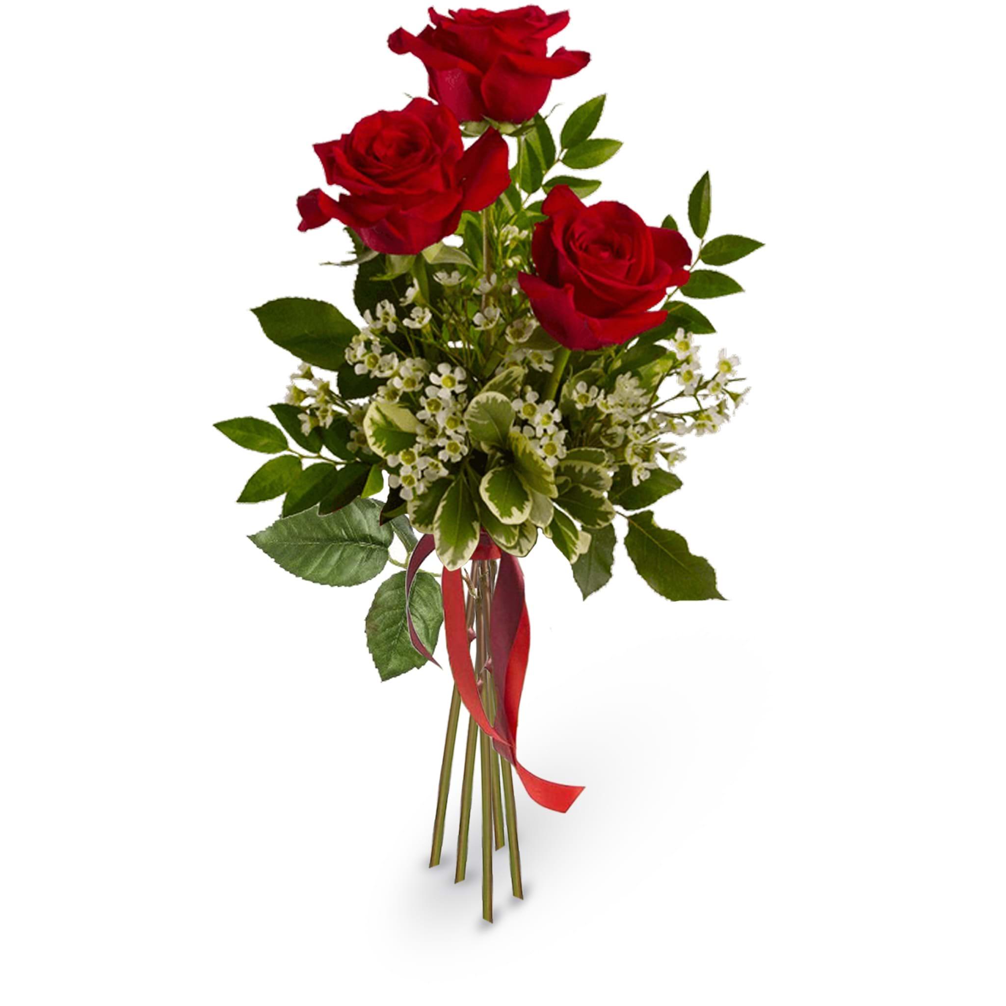 Spedire 3 rose rosse