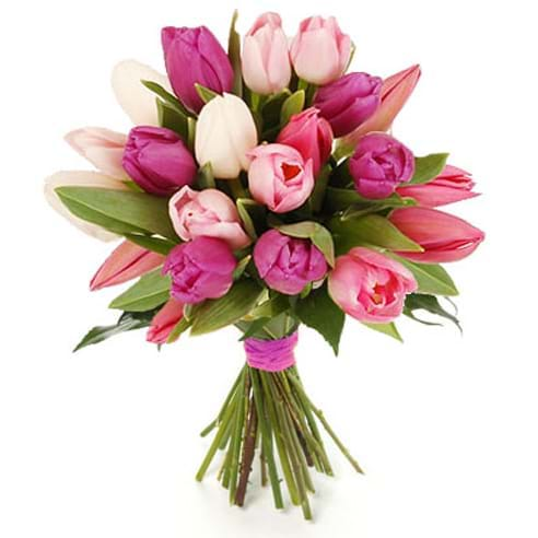 Spedire tulipani rosa