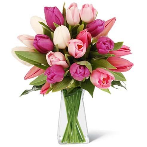 Spedire tulipani rosa con vaso