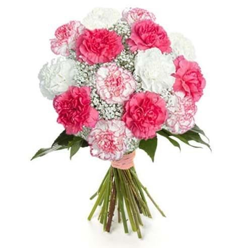 Spedire garofani bianchi e rosa