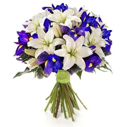 Spedire iris e lilium