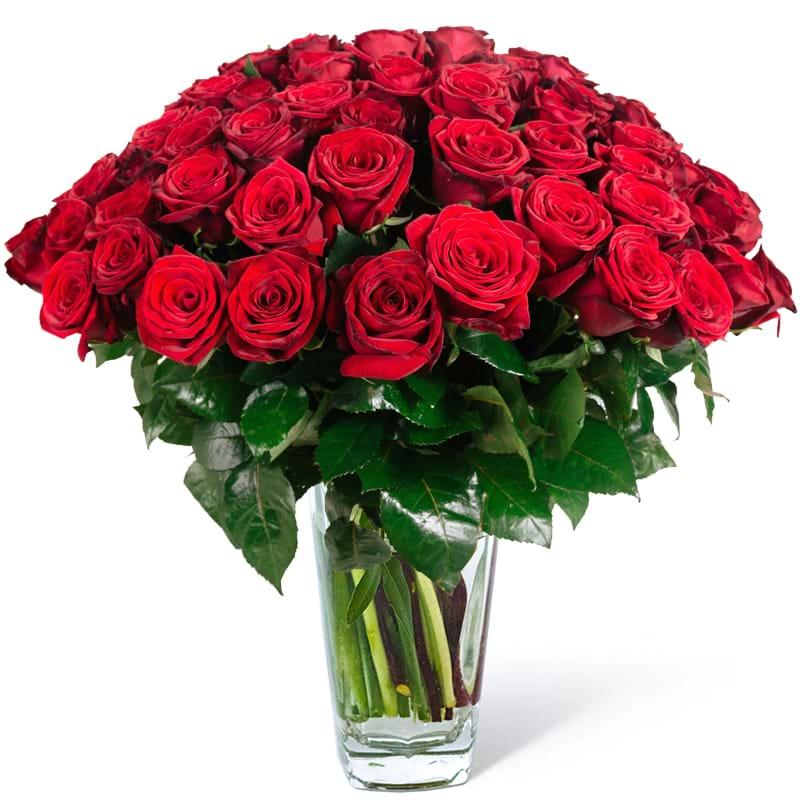 Spedire 50 sfumature di rosso in vaso