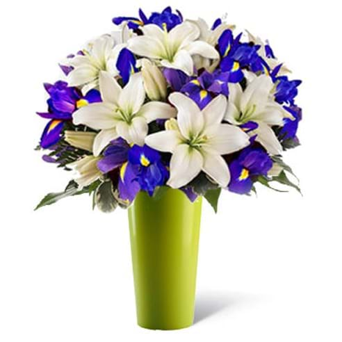 Spedire iris e lilium in vaso verde