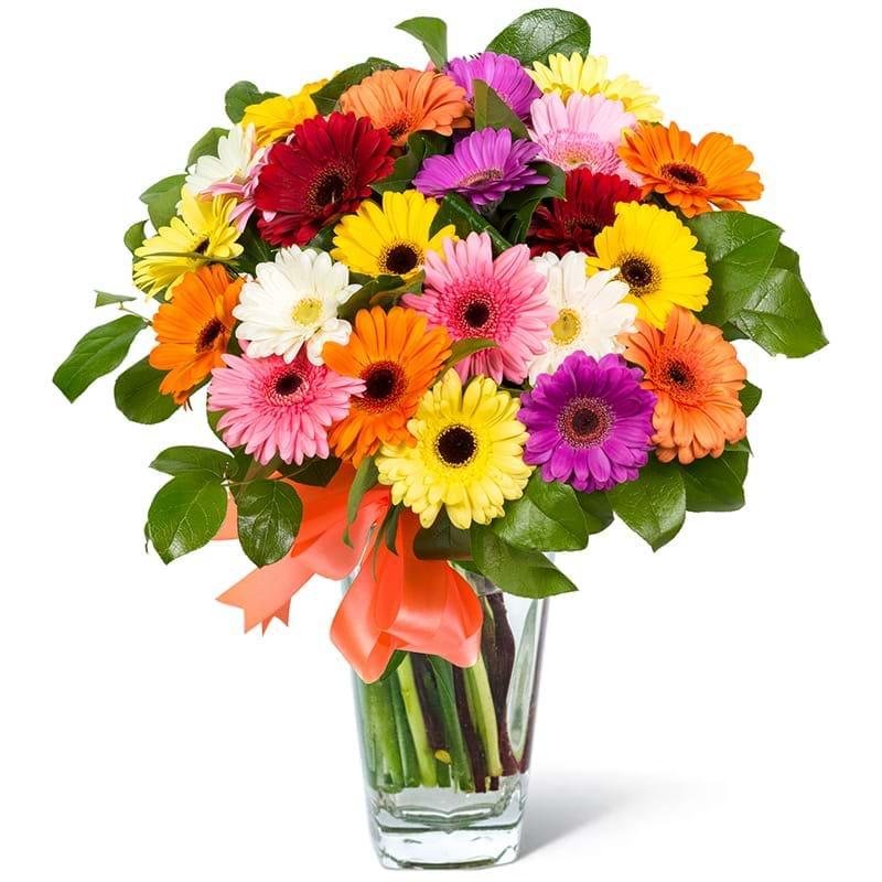 Spedire bouquet gerbere colorate in vaso