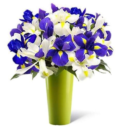 Spedire bouquet iris in vaso verde