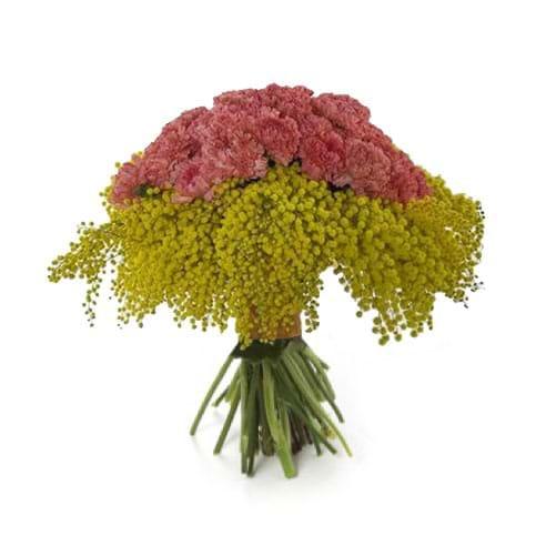 Spedire bouquet con mimosa e garofani