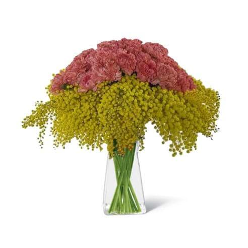 Spedire bouquet di mimosa e garofani con vaso