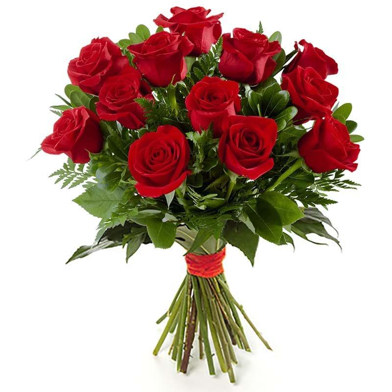 Spedire dozzina di rose rosse