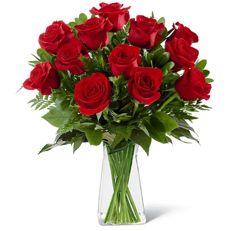 Spedire dozzina di rose rosse in vaso