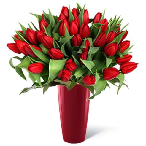 Spedire tulipani rossi iin vaso rosso