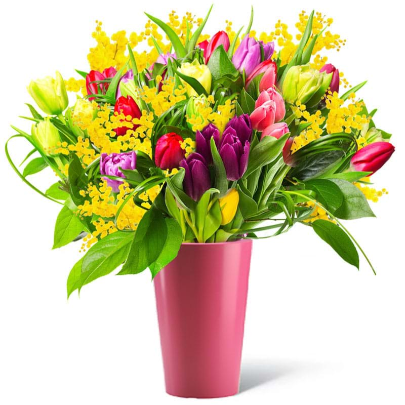 Spedire  tulipani colorati con vaso rosa e mimosa
