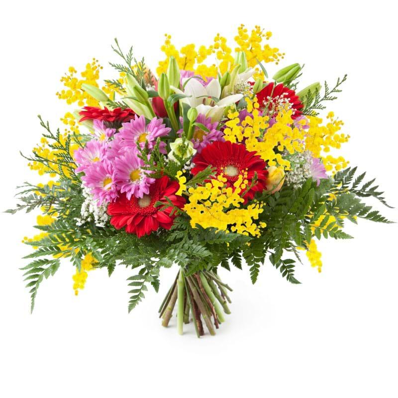 Spedire fiori misti con mimosa