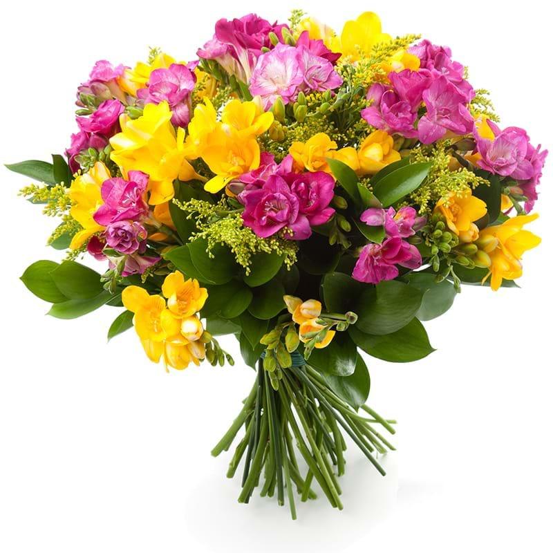 Spedire fresie gialle e rosa
